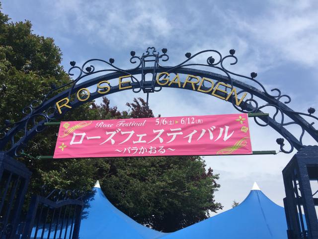 京成バラ園に行って来ました!5月16日の開花情報と園内の様子